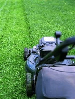 mowing-the-lawn on tenant screening blog