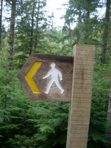 walking_sign4517-225x300